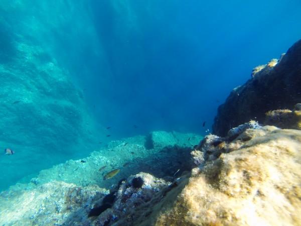 falaise aquatique