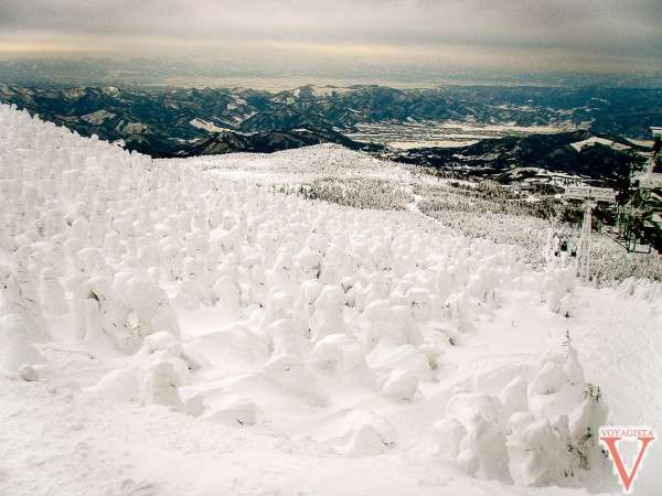 Les snow monsters de Zao Onsen
