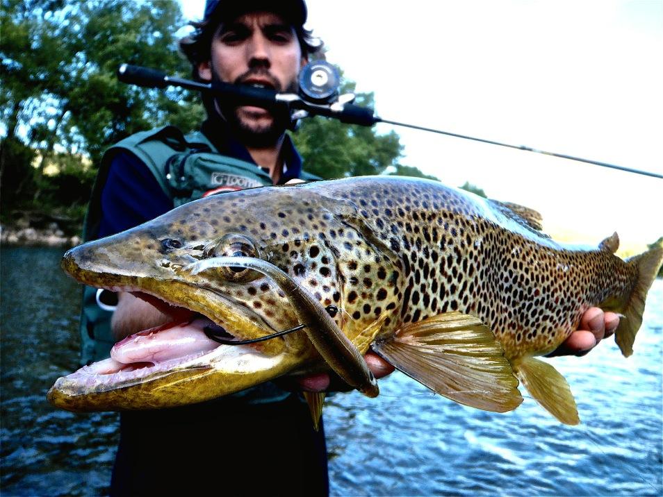La pêche russe installsoft le poisson-épée