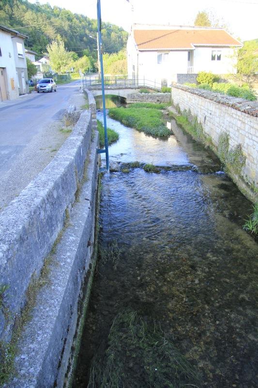Osne : Ruisseau à grosse truite