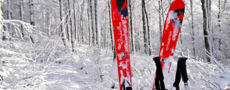 Ski polyvalent Powertrack 84 Dynast...