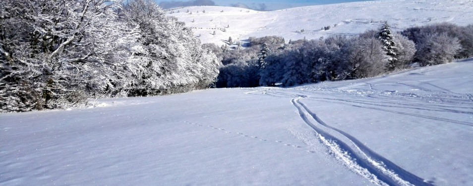 Les meilleurs skis polyvalents 2014...