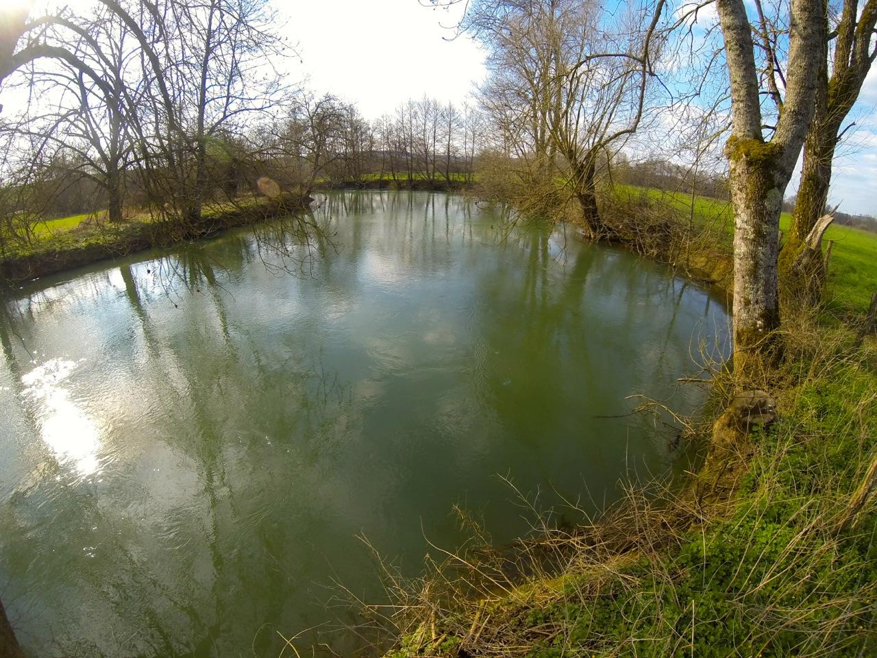 La Marne au repos que j'aime prospecter pour des poissons record