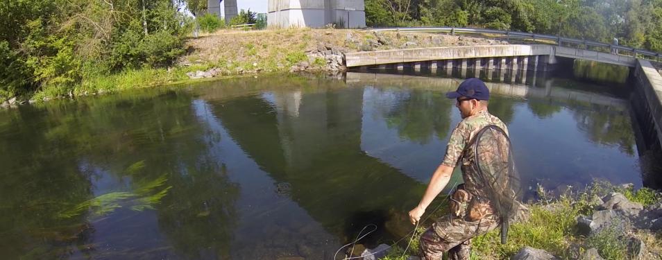 L'histoire d'une pêche ...