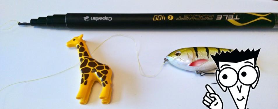 Comment choisir sa canne à pêche qu...