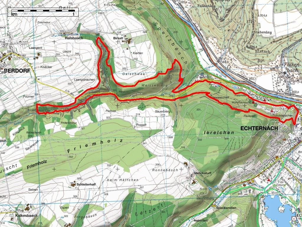 Meilleur Trail du Mullerthal E1 - 12km