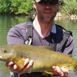 Fat trout