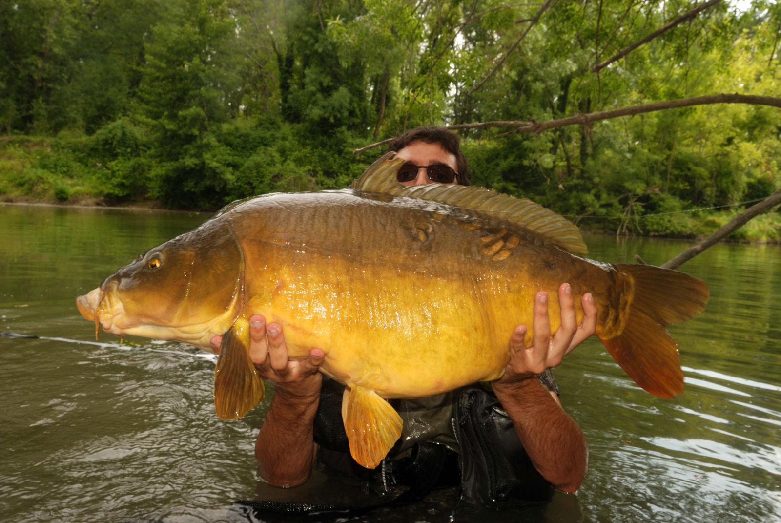 La carpe peut également se pêcher en rivière avec une seule canne comme ici avec mon ami Julien.