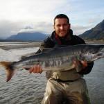 saumon alaska