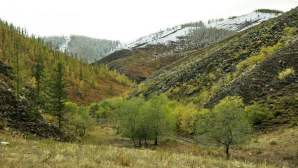 Paysage d'automne en Mongolie