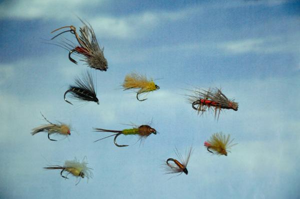 Les meilleurs mouches pour pêcher en Mongolie