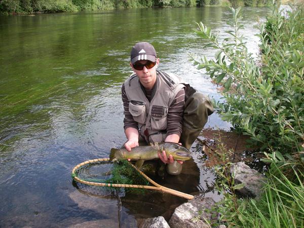 Une grosse truite sur un bras du Rhin