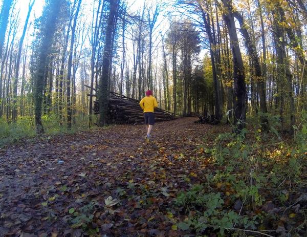 Course à pied dans les bois
