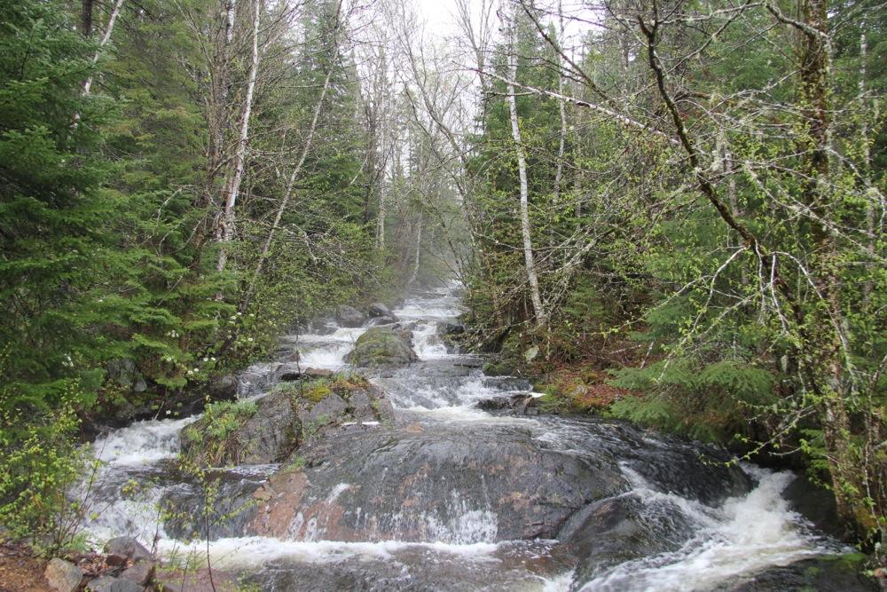 Des dizaines de rivières séparent les étendues d'eau...