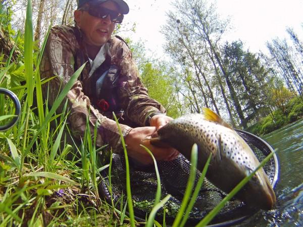 No-kill rapide truite de fin de saison