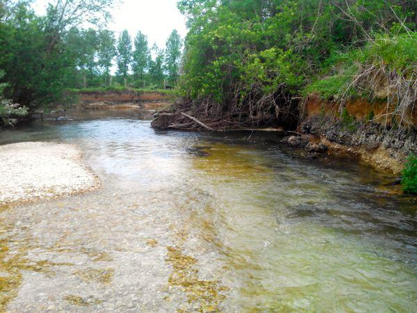 Rivière calcaire