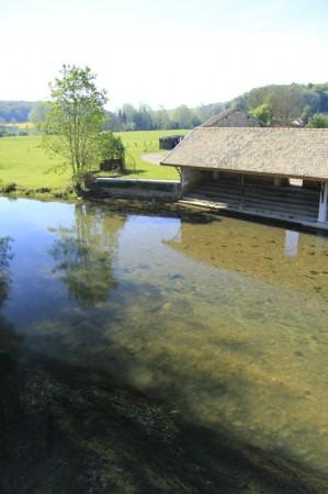 Lavoire dans la réserve (Rognon)