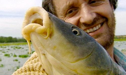 patrick lamaison pêche à la main