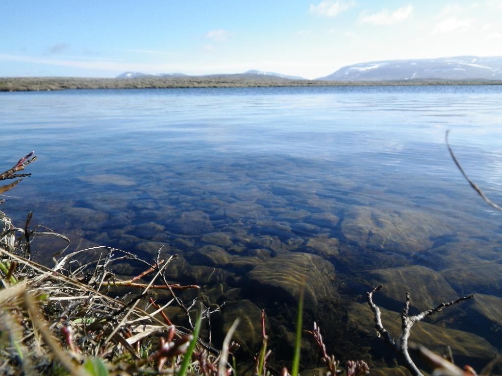 Lac d'Island pour la pêche