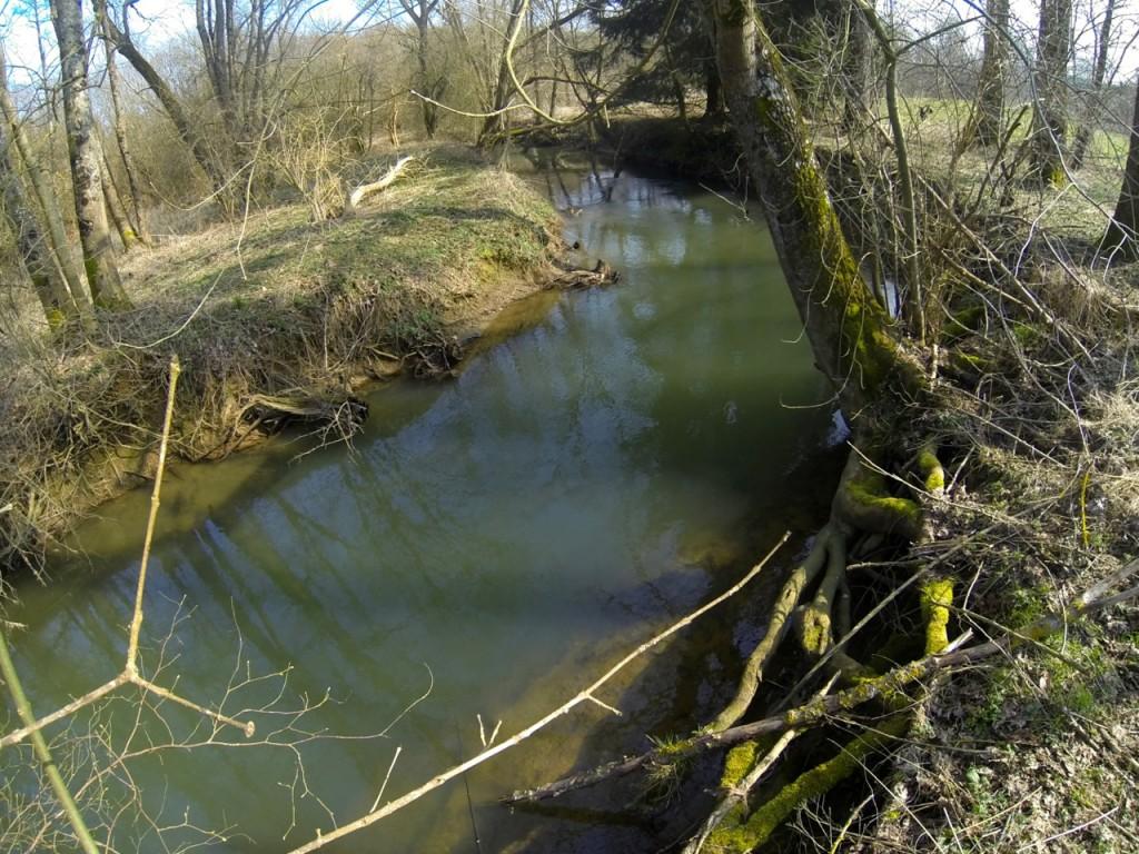 Une rivière très sauvage