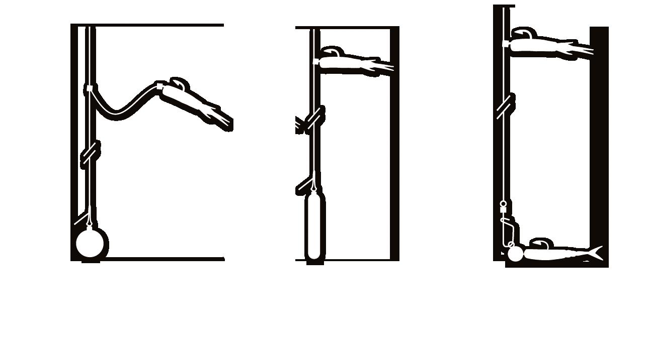 peche truite drop shot
