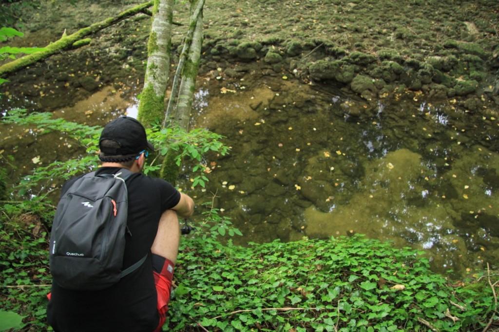 Observation sur l'Aube
