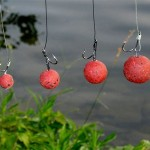 Pêche à la bouillette