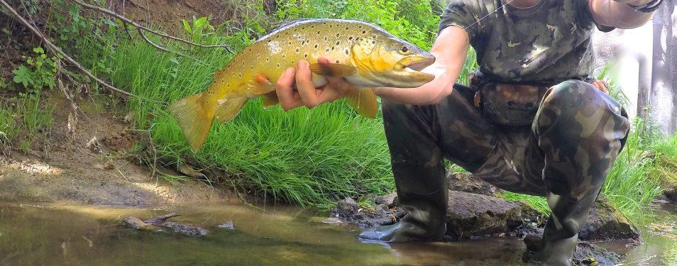 8 conseils pour trouver des rivière...